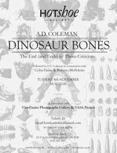 Hotshoe Gallery, London, poster for A. D. Coleman lecture, November 8, 2011.